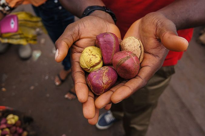 Nigeria_cola_nuts.jpg