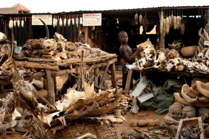 Voodo-fetischmarkt-Lomé.jpg